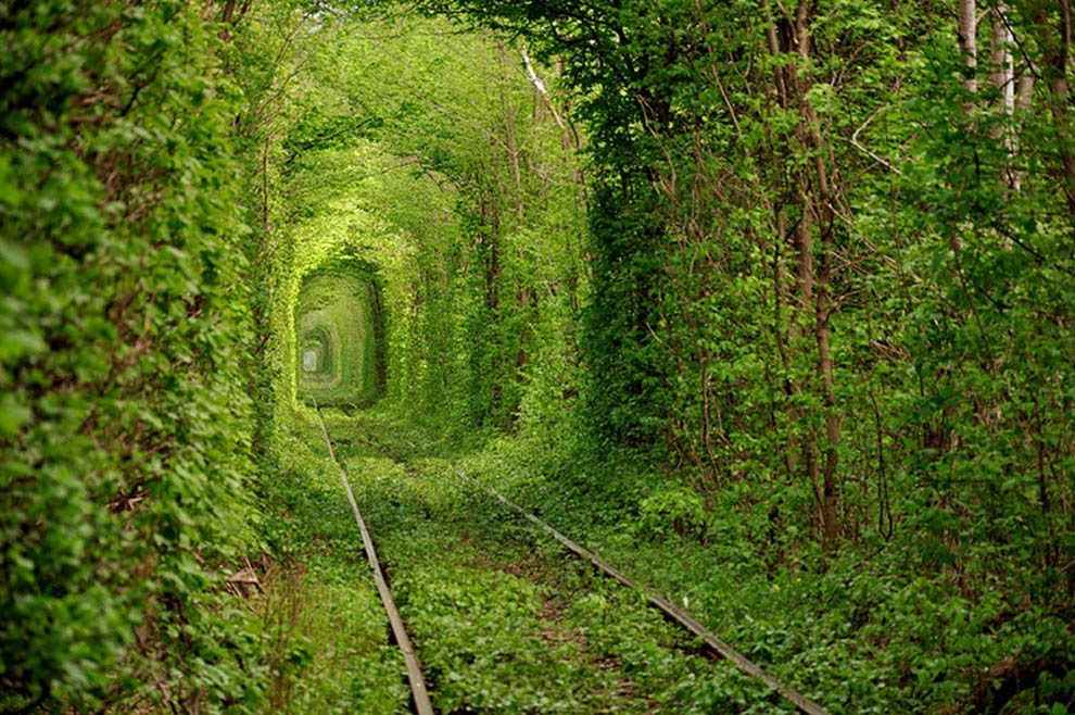 Lugar mais bonito, túnel verde