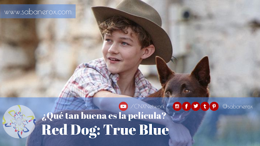 ¿Qué tal es la película? ^ Red Dog: True Blue