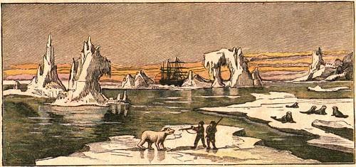 region polaire