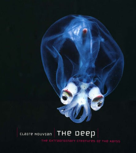 The Deep The Extraordinary Creatures Of The Abyss