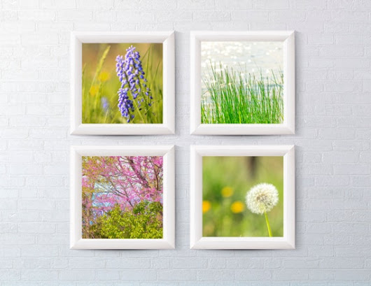 Nature Set of 4 10x10 prints by BrickHausPhotography on Etsy
