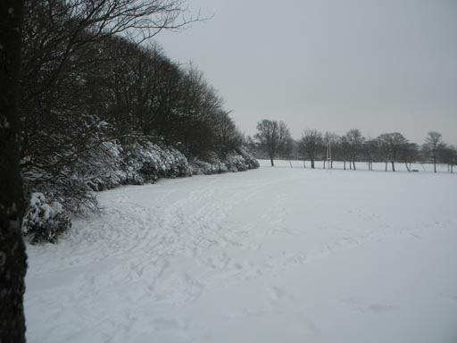 Snow 023-007.jpg