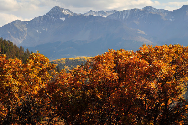 Wilson Peak, Mount Wilson and El Diente in autumn