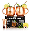 Amazon.com: The Full Moscow Mule Kit with Free Extras - Moscow Mule Copper Mugs Set of 2 - 100% Solid Copper Hammered Cups 16oz - Unique Extras: Jigger, Stirrer And Two Straws – Premium Quality – By Shoko Moscow: Kitchen & Dining