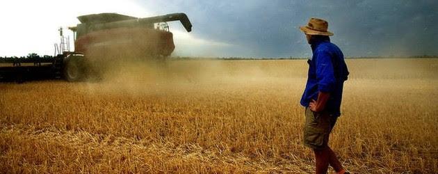 Relatório de Alimentos diz investimento estrangeiro veio para ficar