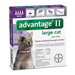 Bayer Healthcare Animal BY20224 Advantage Ii Large Cat 4 Pack