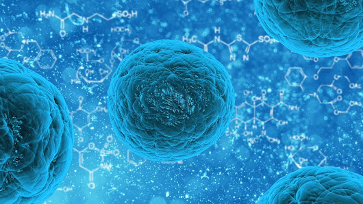 CRISPR gene editing makes stem cells 'invisible' to immune system