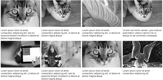Using Modern CSS to Build a Responsive Image Grid