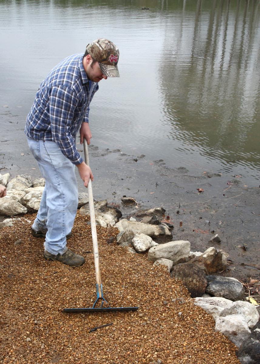 Make A Habitat Complex For Easy Fishing Success Mississippi State University Extension Service