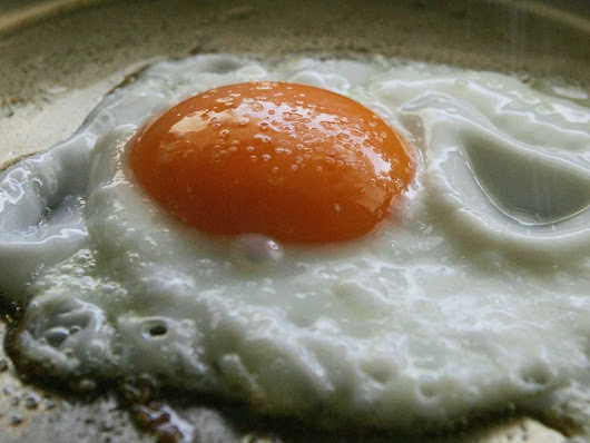 10 Scientific Reasons You Should Be Eating More Eggs