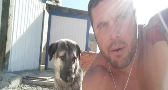 Después de un mes de no rendirse un soldado logra llevar a casa al perro que adoptó en la guerra