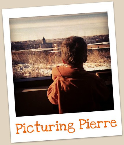 Picturing Pierre, take two