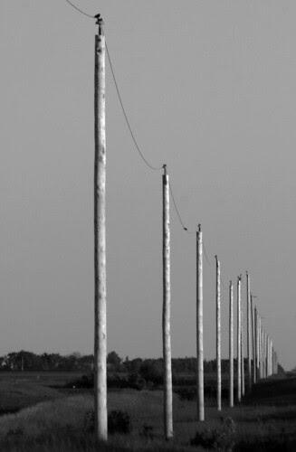 prairie-poles