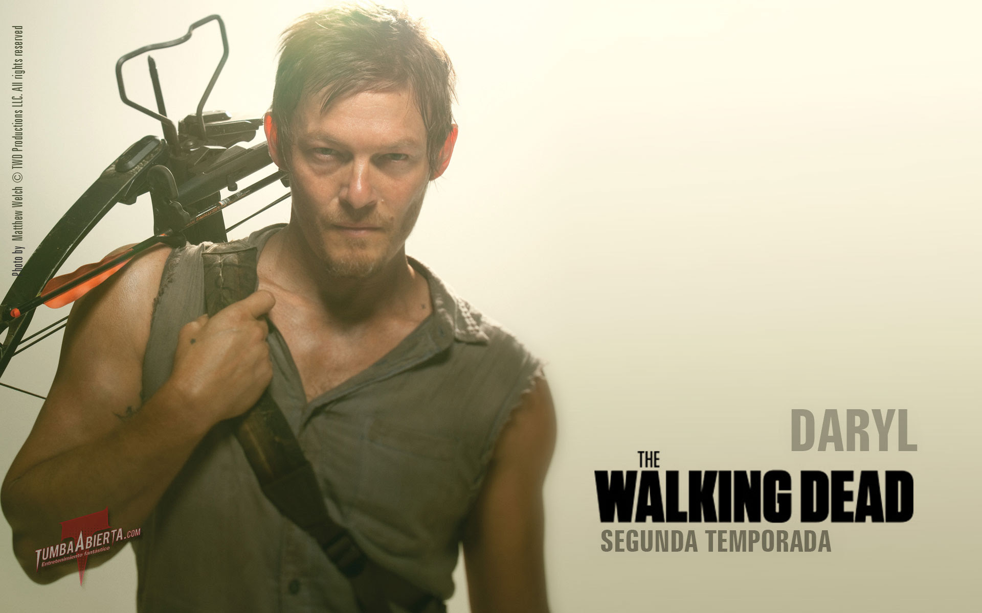 Daryl The Walking Dead Wallpaper 1920x1200 56739