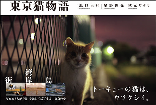 "「東京猫物語」写真集発売 ""Tokyo stray cats story"" --- Our photo book will be publised."