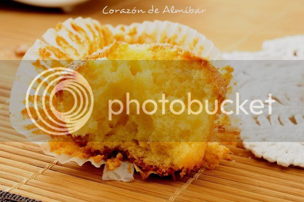photo _DSC6243-4_zps44afe81d.jpg