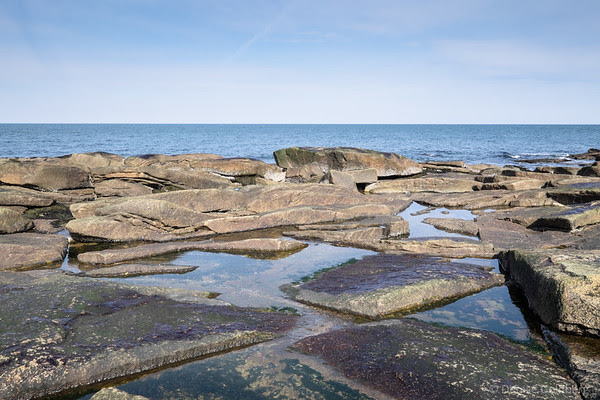 rocks along the coast, at Halibut Point State Park