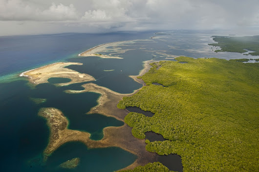 Funds Are Needed for Marine Protected Areas | Conservancy Talk
