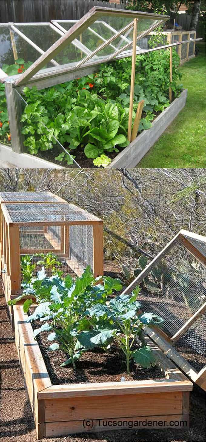 Hinged top cold frames and DIY greenhouses