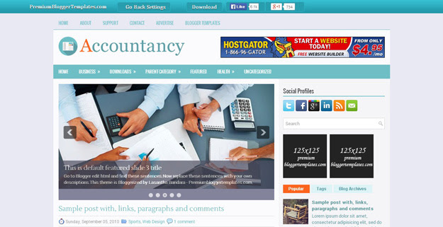 Accountancy Template