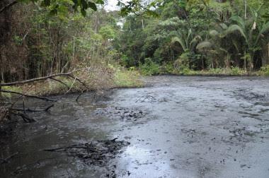 <p>Zona contaminada del río Amazonas. / UAB</p>