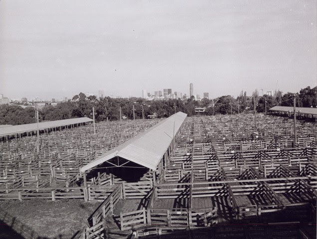 saleyards