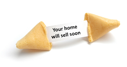 fortune cookie2.png