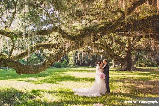 Magnolia Plantation Veranda Wedding | WildFlowersinc.com