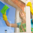 House Cleaning Coquitlam, Port Moody, Port Coquitlam - Spic 'n Span