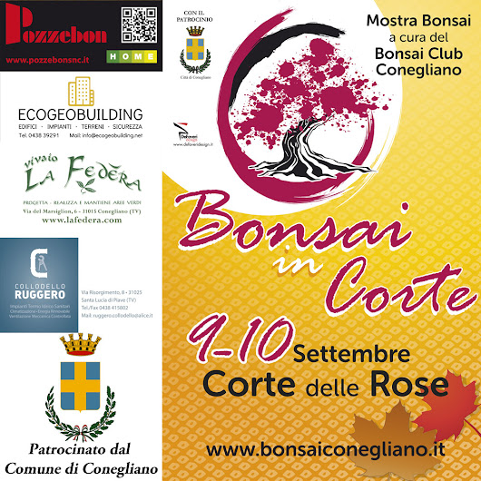 Bonsai in Corte delle Rose 2017 - Bonsai Club Conegliano