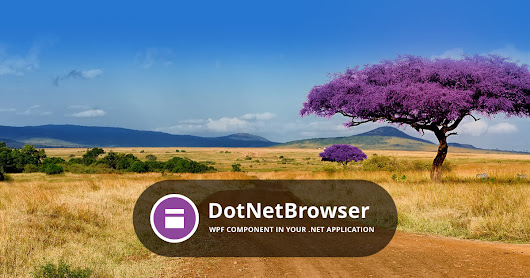 DotNetBrowser — Add Chromium to your .NET app