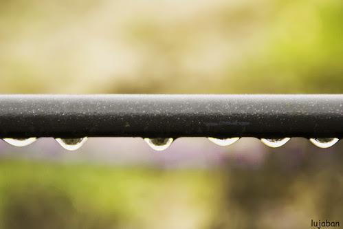 Raindrops3... by lujaban