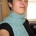 Amanda's scarf web