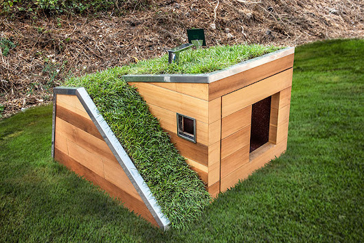 Here's Some Fancy Dog House 'Bark-itecture,' If You Will…