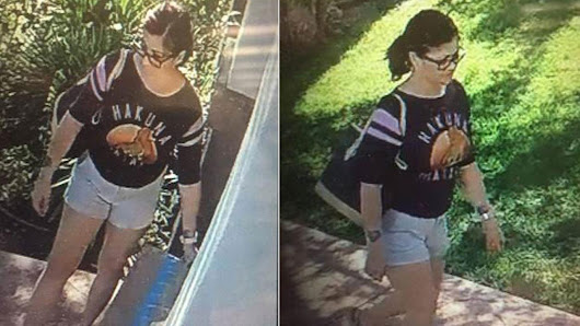 Covina police search for package thief caught on camera |