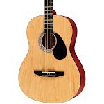 Rogue Starter Acoustic Guitar, Matte Natural