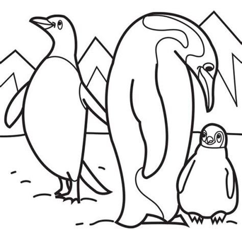 arctic animals coloring pages ststephenuabcom