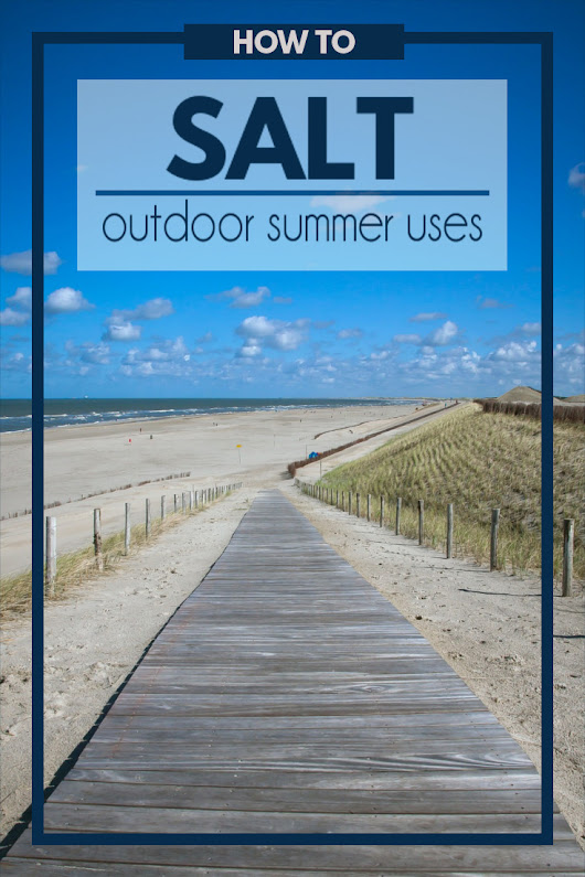 How to Use Salt Outdoors this Summer | Fluster Buster