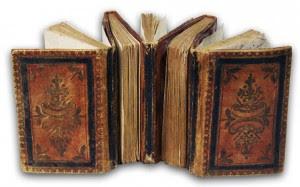 Los libros siameses6