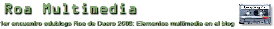 Roa Multimedia