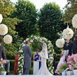 Buy bulk wedding flowers online for an inexpensive and stunning décor | Whole Blossoms