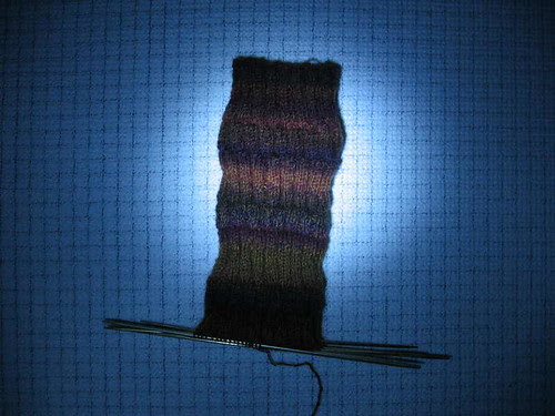 Supporter's Sock, secundus
