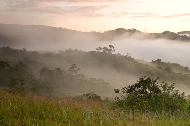 Ilocos Norte - Adams Lovers' Peak Fog and Grassland