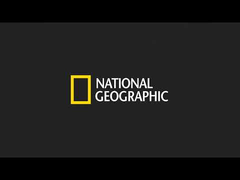 Assistir National Geographic