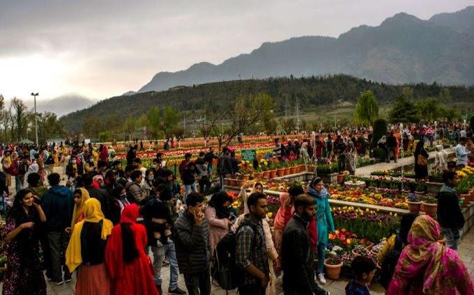 J&K admin's initiatives keep tourism afloat amid pandemic