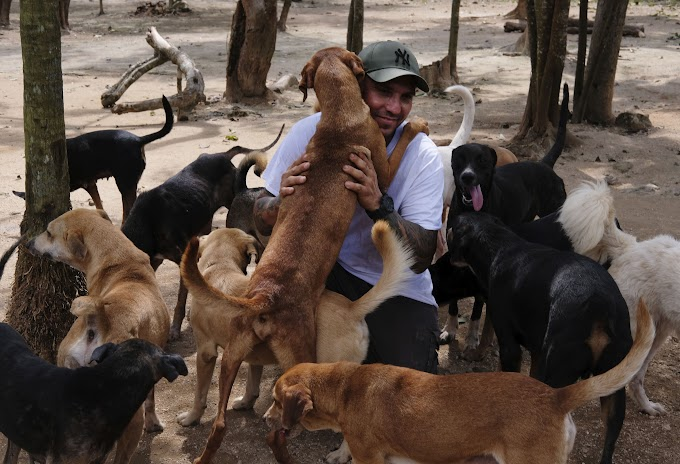 TREND ESSENCE: Man protects 300 dogs from Hurricane Delta by bringing them to safety inside his home