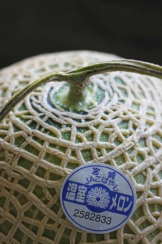 Musk Melon 1