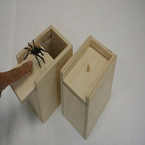 Spider Prank Scare Box | your amazing gift