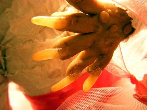 Scytale (left hand)
