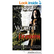 A Wizard of Dreams (Myrddin's Heir Book 1) eBook: Robin Chambers, Amy Chambers: : Kindle Store